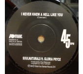 I Never Knew A Hell Like You / (Andy Lewis Remix)