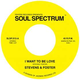 I Want To Be Love / What Would I Have - Excellent rare sides now on a nice single!