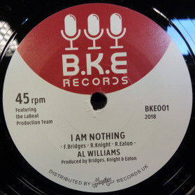 I Am Nothing / Try Them - great northern!