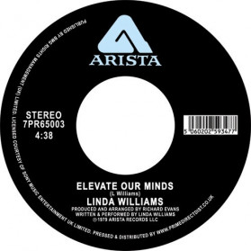 Elevate Our Minds / City Living - About time someone reissued this rare groove classic!