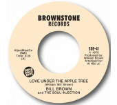 Love Under The Apple Tree / Fool-ology - Unissued soul from 1975!